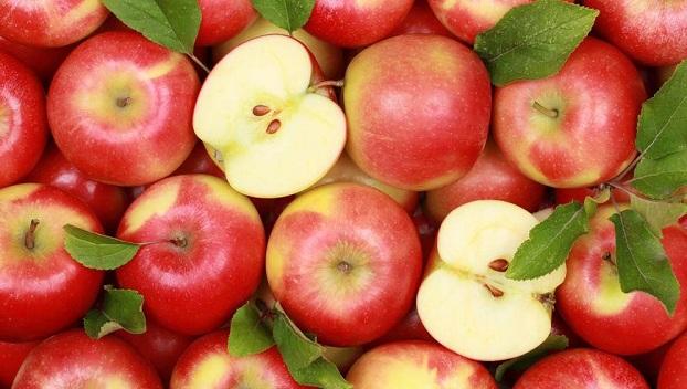 В Латвии собрали урожай яблок и выложили из них орнамент, который похож на свастику (фото)