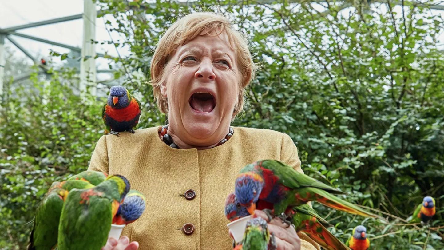 «Неплохо справилась». Меркель клюнул попугай в птичьем парке (фото)