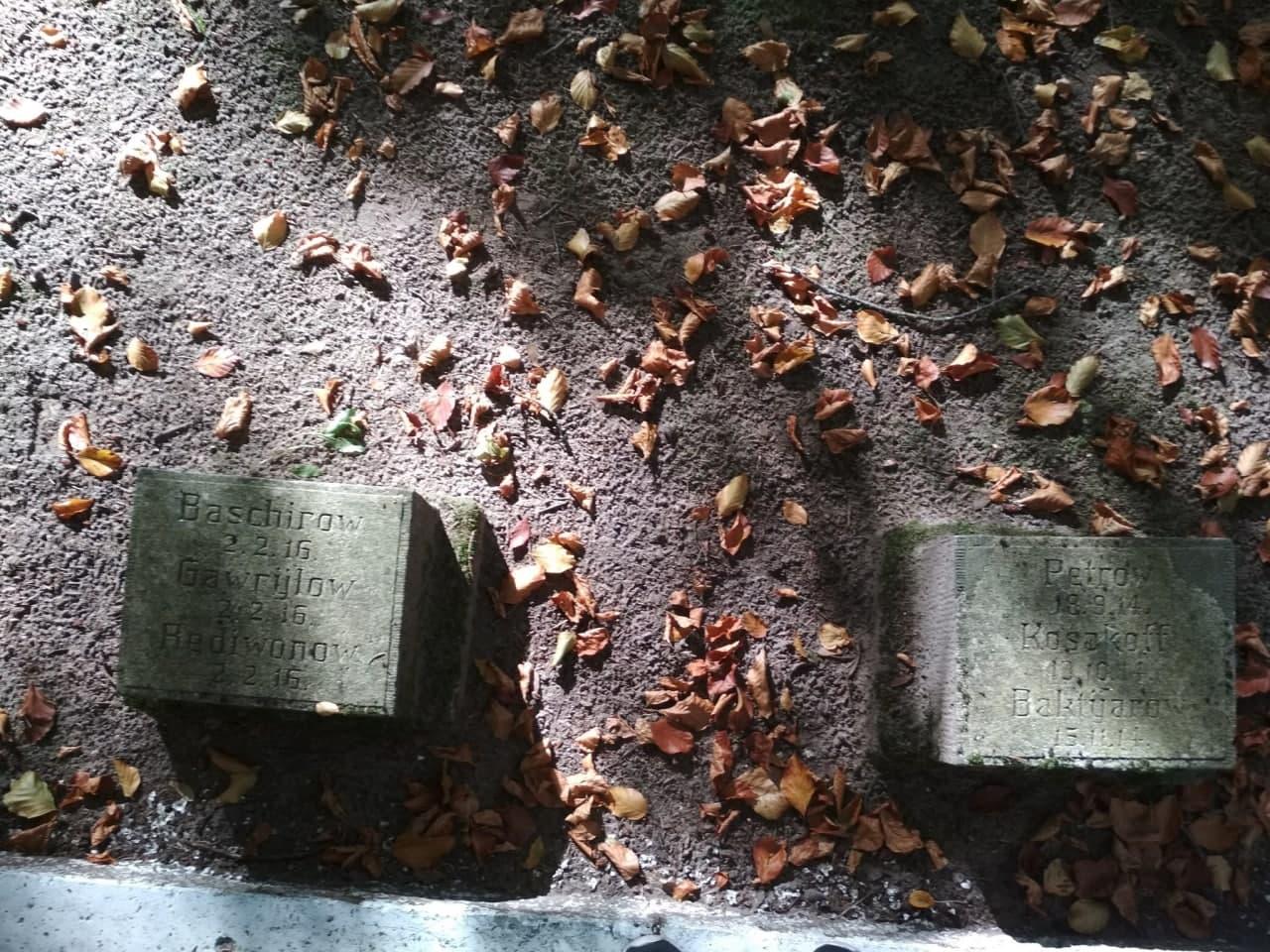 В Калининградской области обнаружили могилы Петрова и Баширова (фото) - 1 - изображение